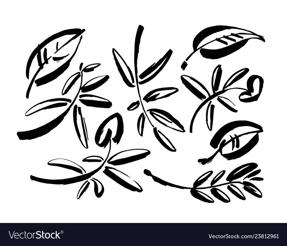 Leaf icons isolated on white background
