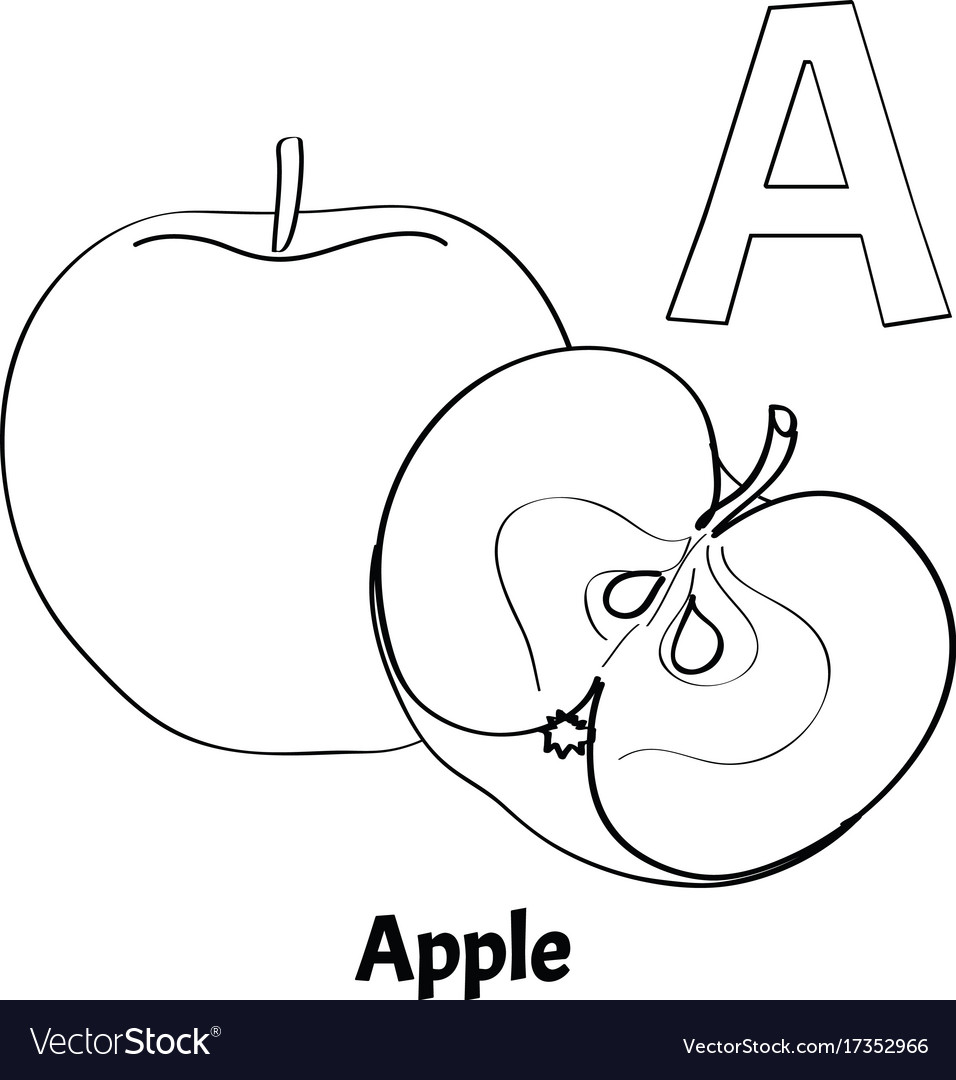 Alphabet Letter A Coloring Page Apple Vector Image