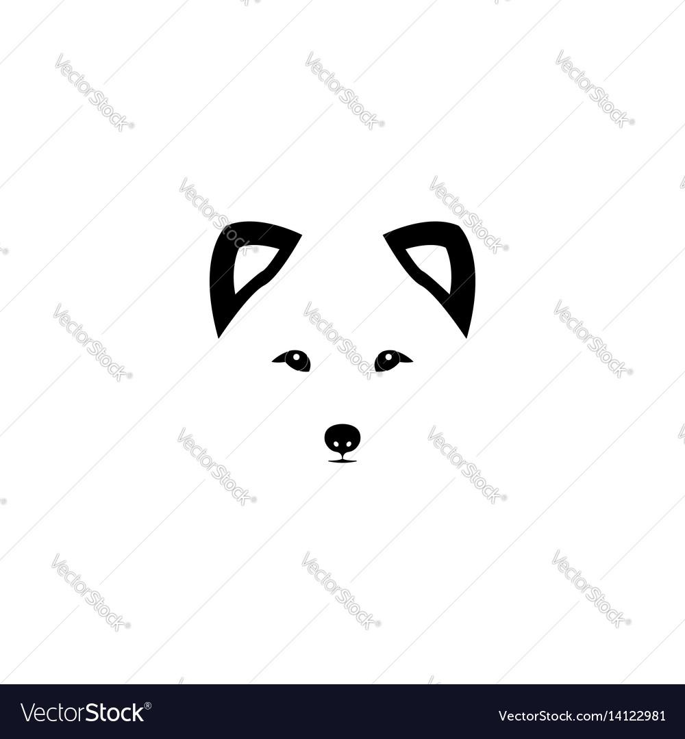 Arctic fox head on white background