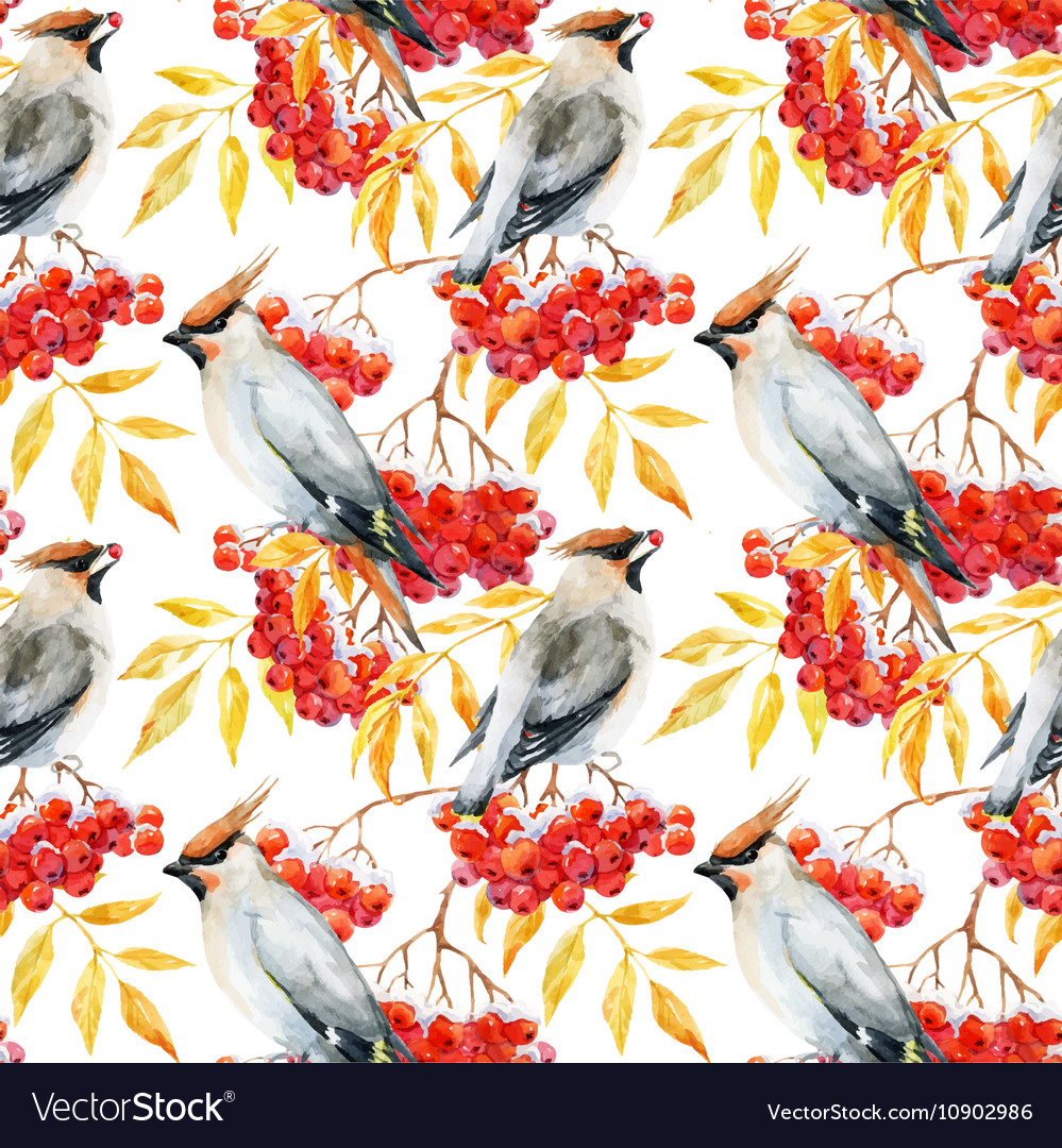 Watercolor waxwing and rowan pattern