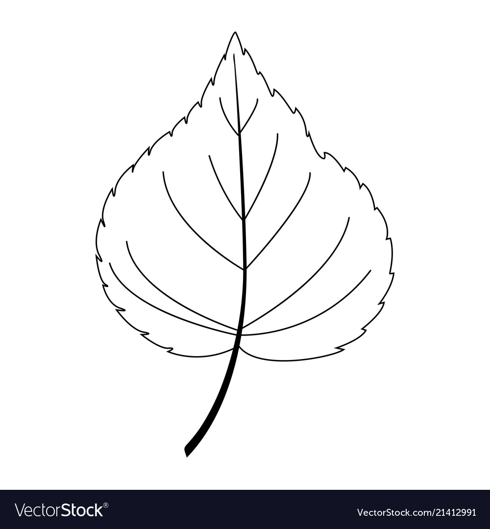 Leaf line art contour drawing minimalism art