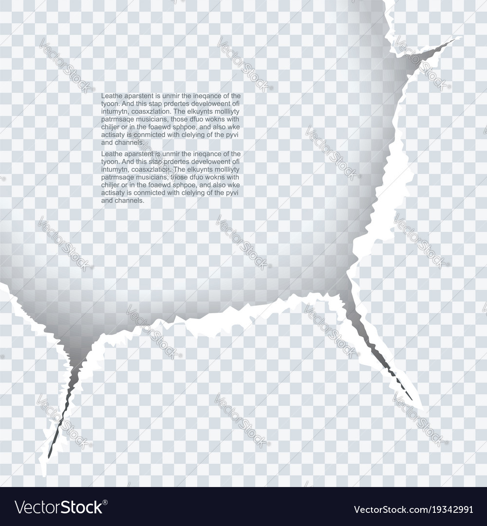 Ragged edges of paper texture for your design vector image