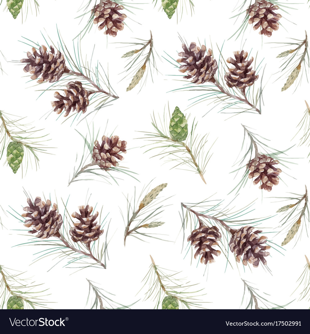 Watercolor fir cone pattern