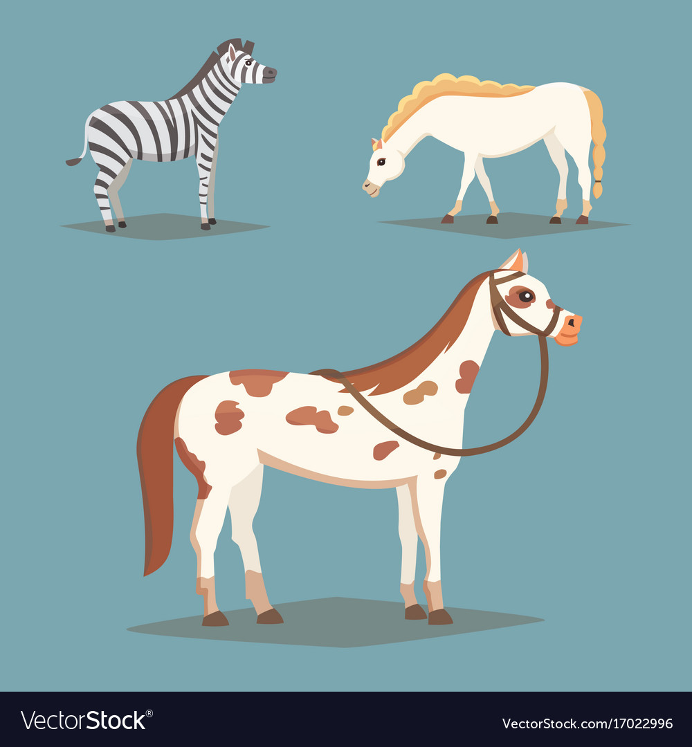 Collection of isolated horses cute cartoon horse