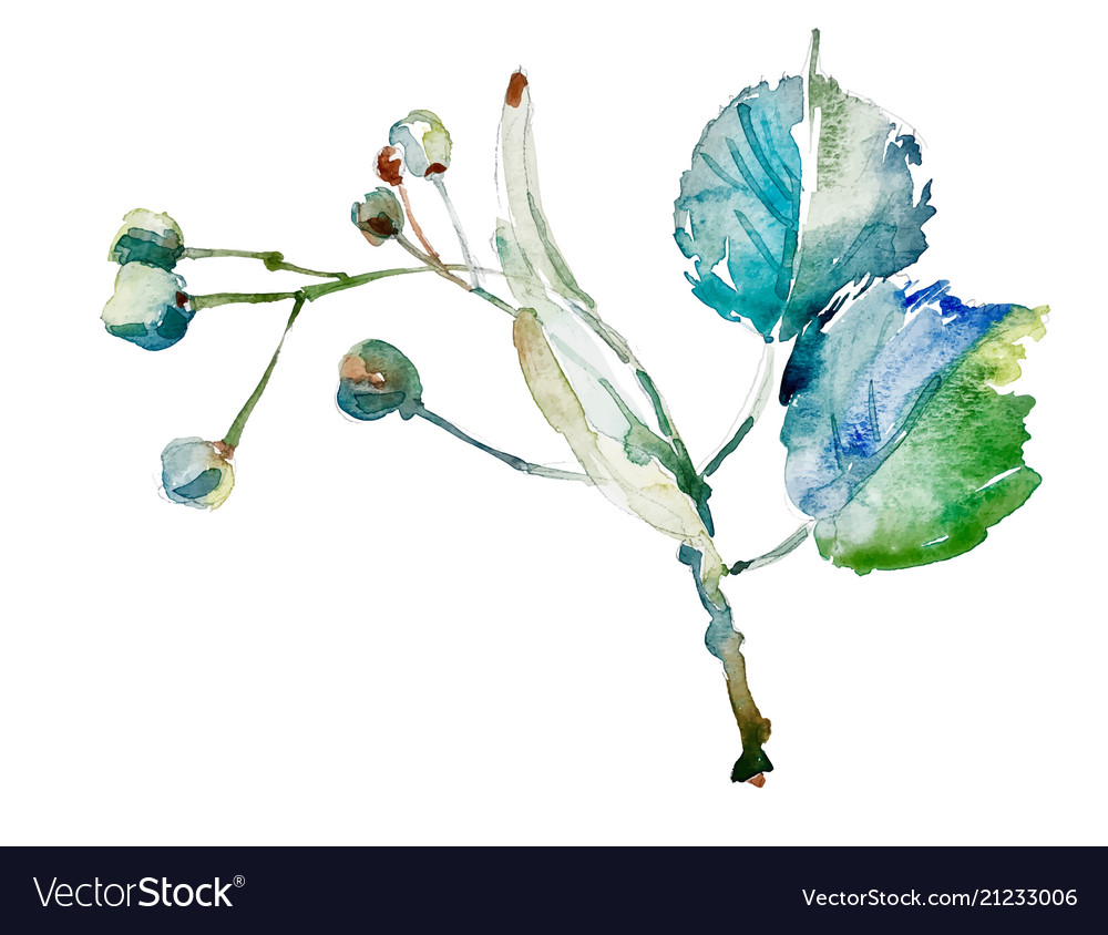 Hand drawing watercolor botany element isolated on