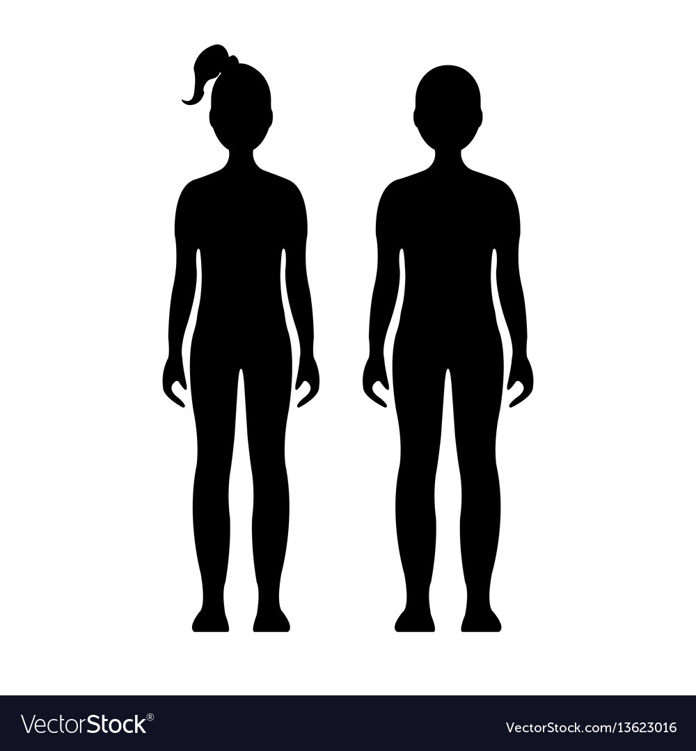 Human front side silhouette vector image