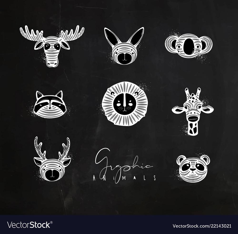 Animals authentic graphic