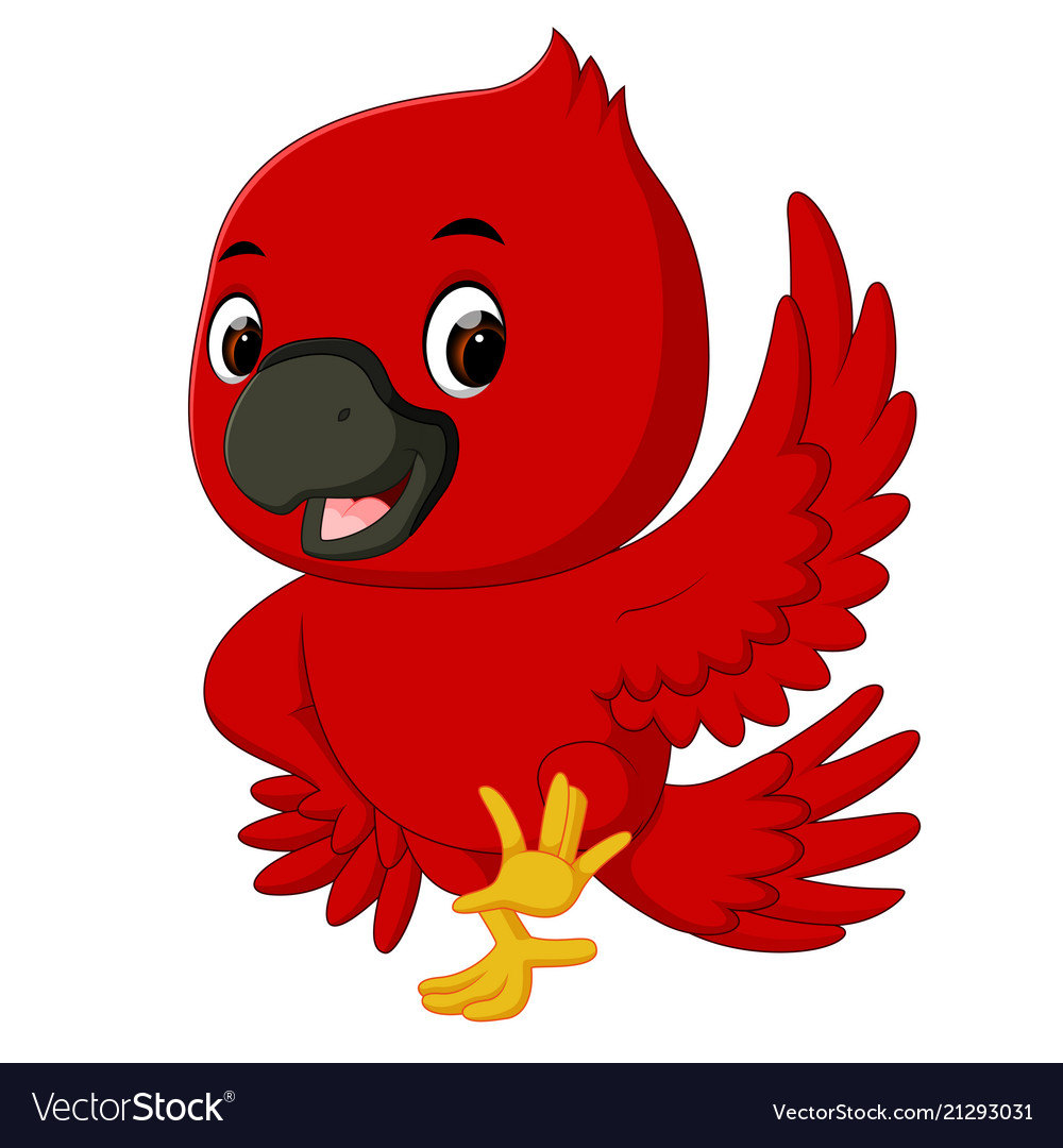 Cardinal Bird Cartoon Royalty Free Vector Image