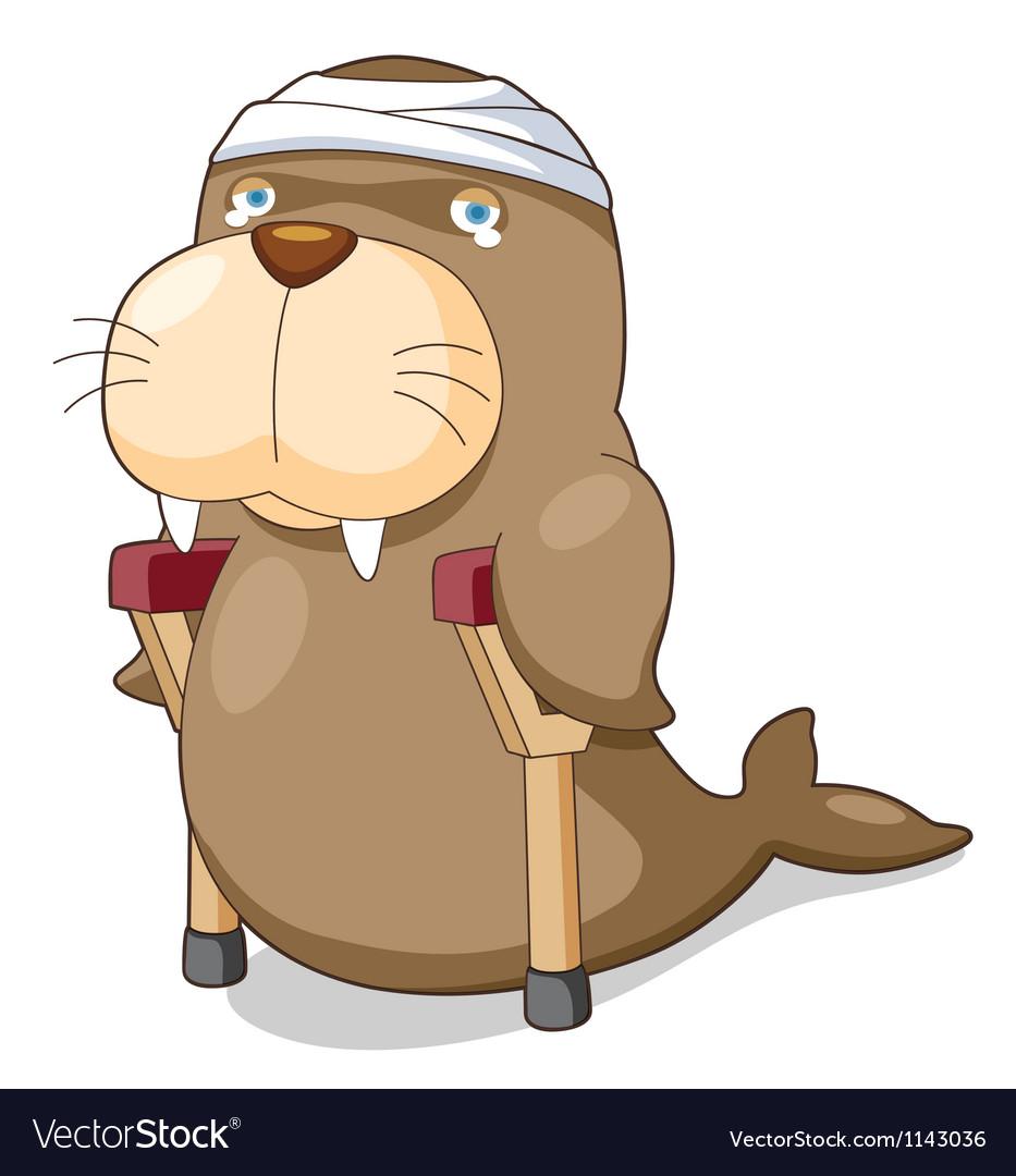 Cartoon sea lion be injured