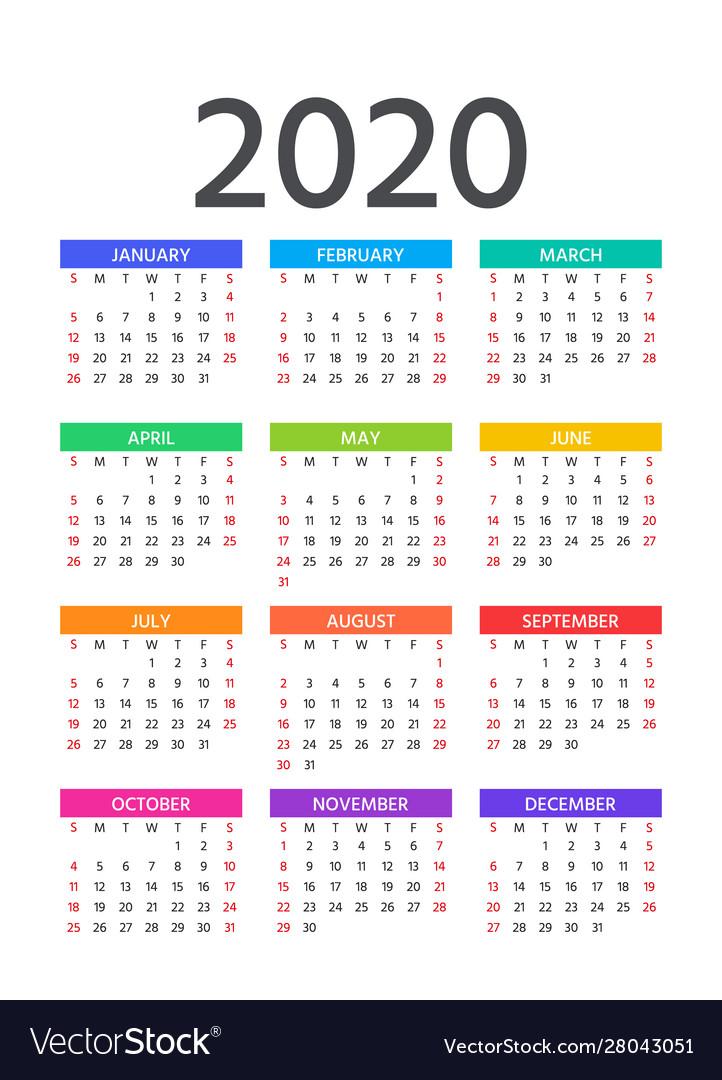 2020 Calendar Template Year Pocket Planner Vector Image
