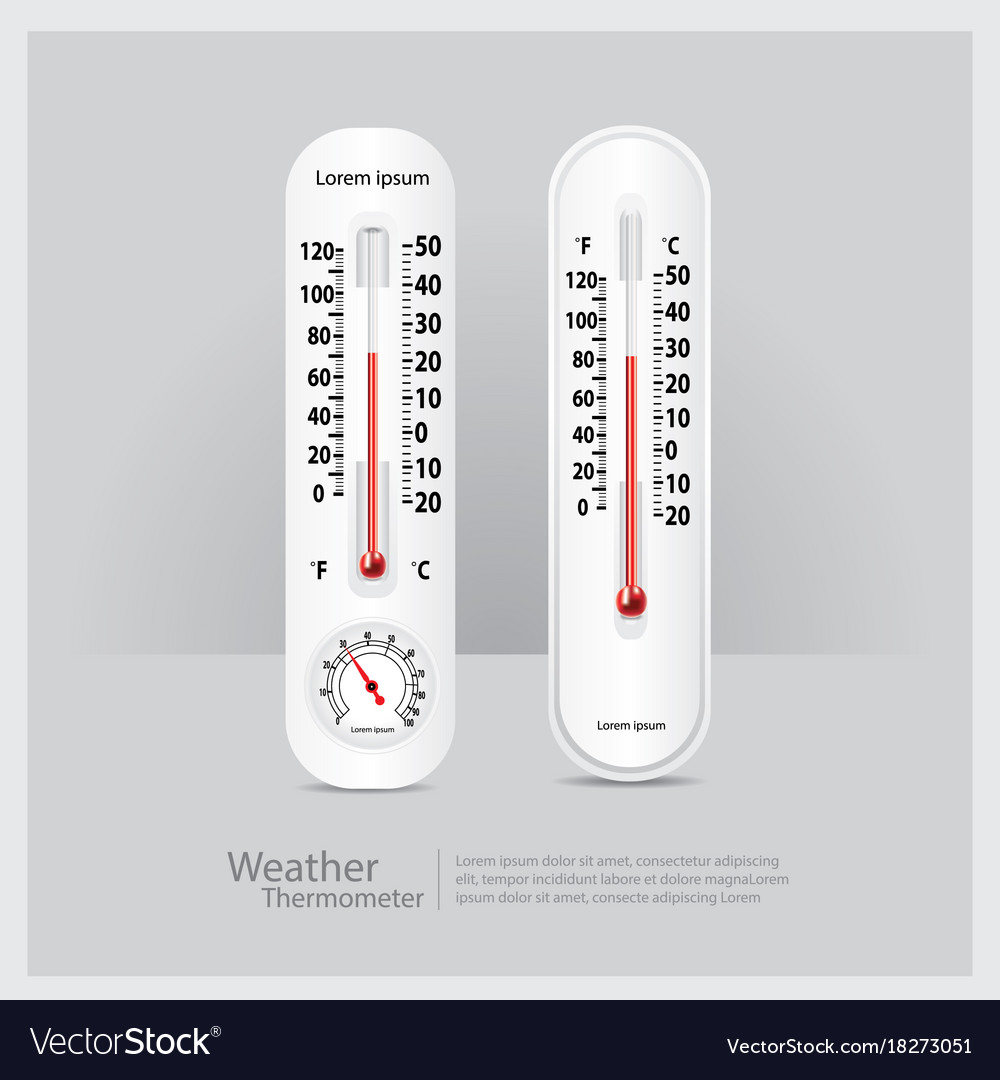 Weather thermometer isolated vector image
