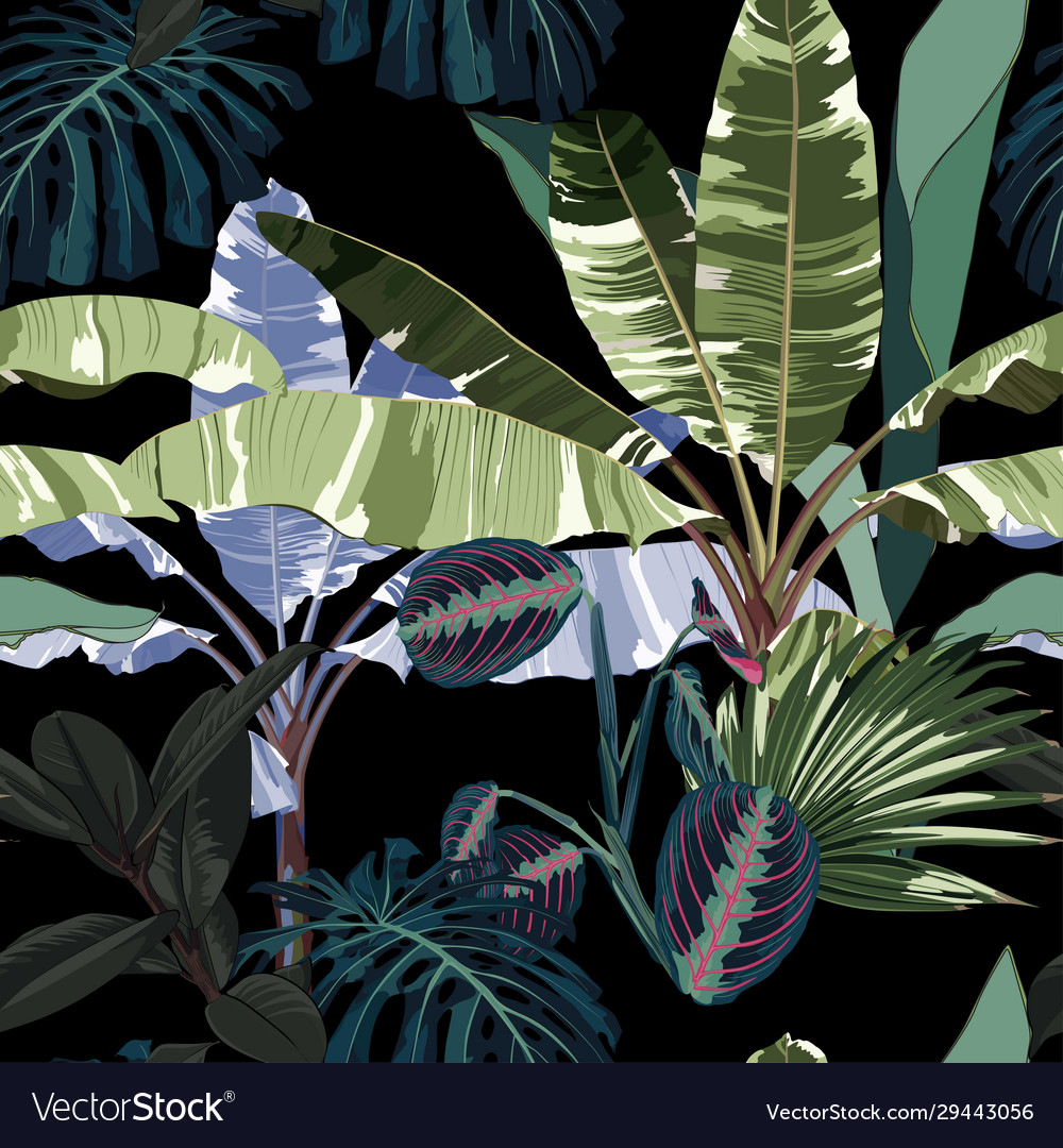 Tropical Vintage Night Plants Royalty Free Vector Image