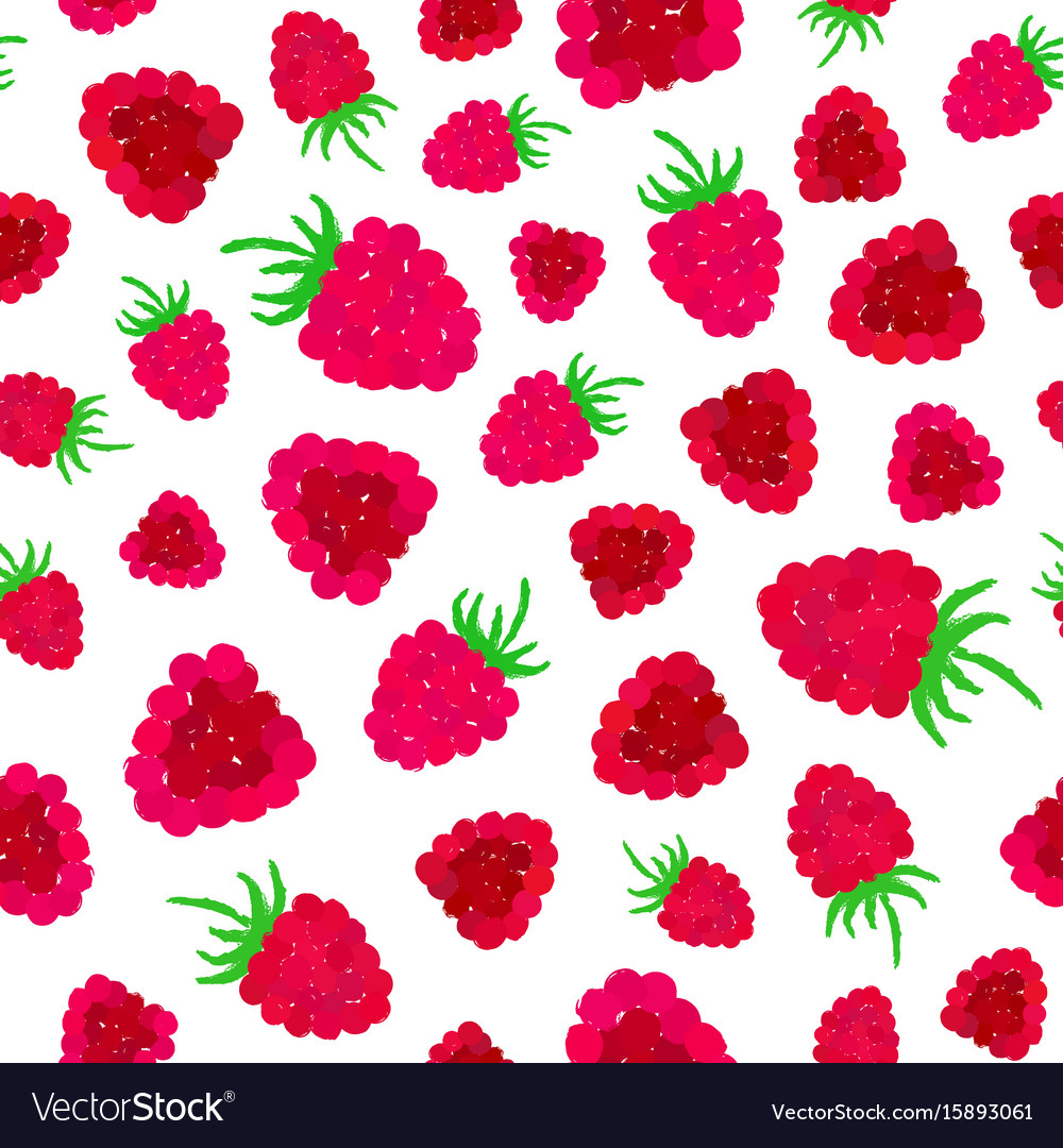 Raspberry background painted pattern vector image