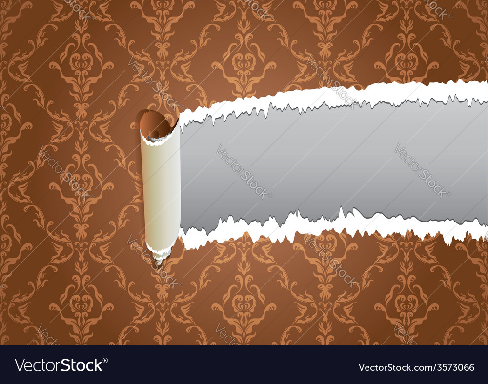 Torn wallpaper frame vector image