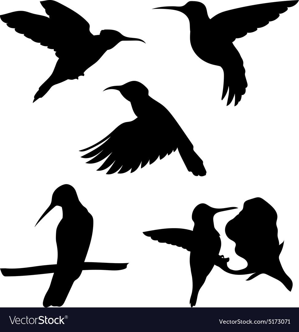 Colibri set