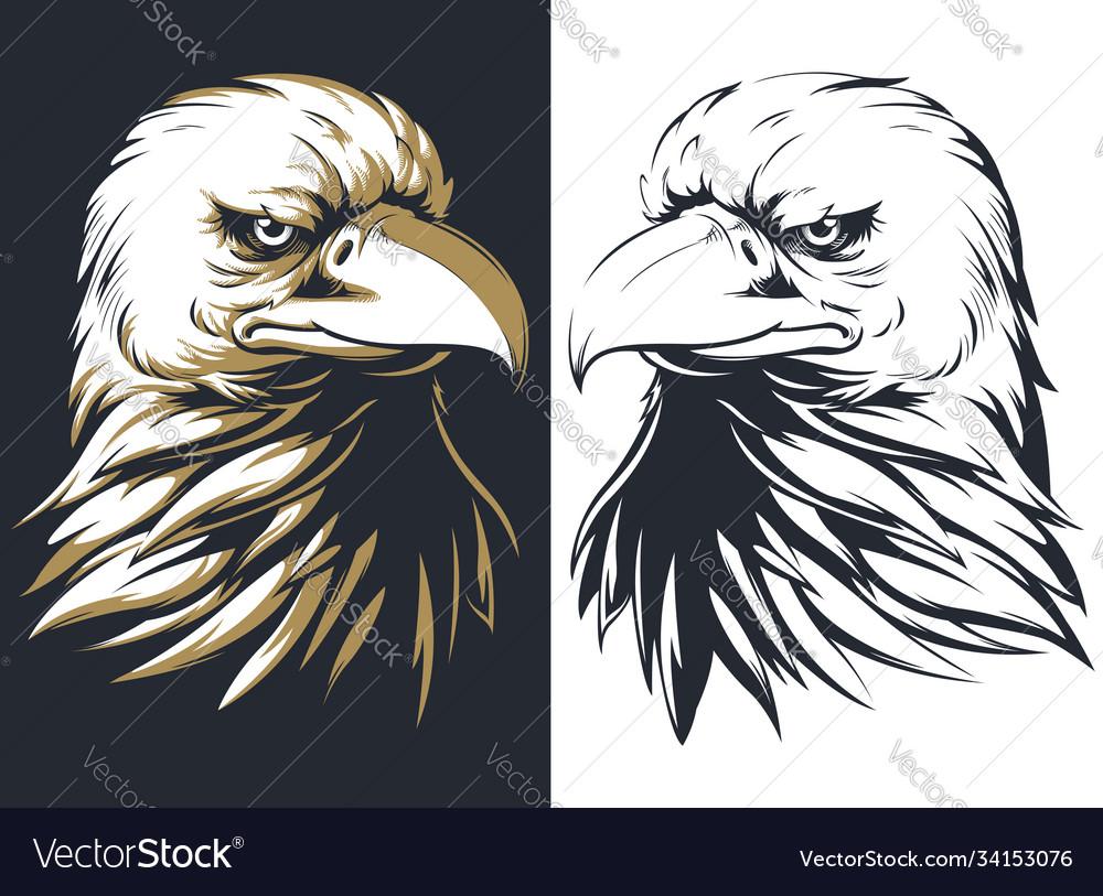Silhouette bald eagle head isolated logo ma