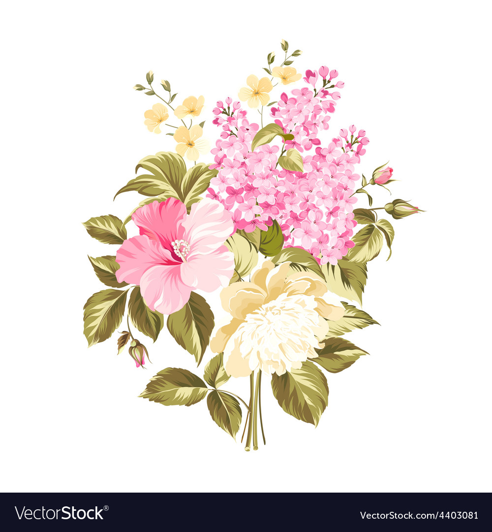 Spring syringa flowers vector image