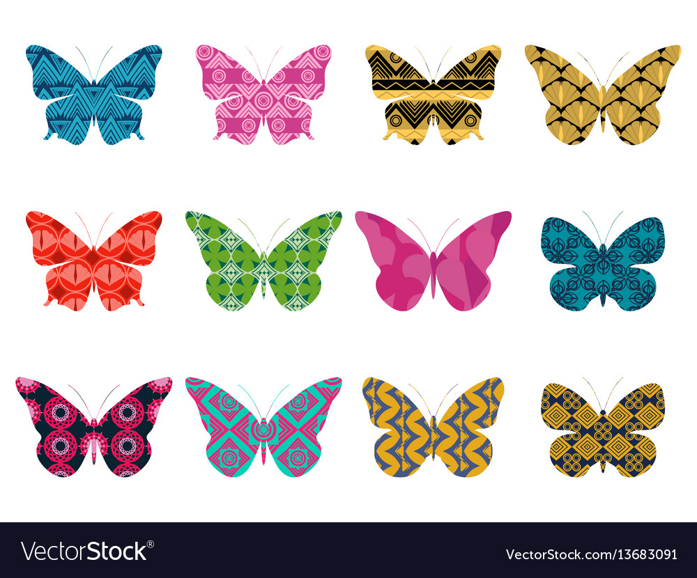Butterflies with a pattern on a white background