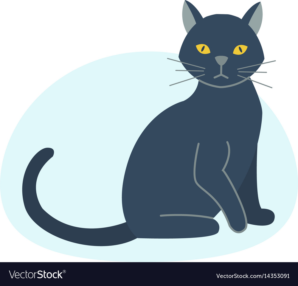 Cute black cat character funny animal domestic