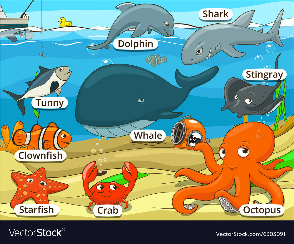 Underwater animals and fish with names cartoon vector image