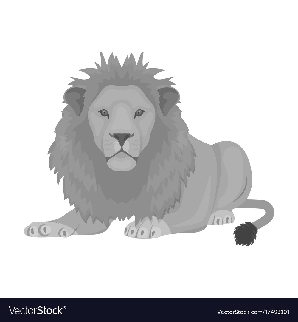 A lion a wild and ferocious predator leo the