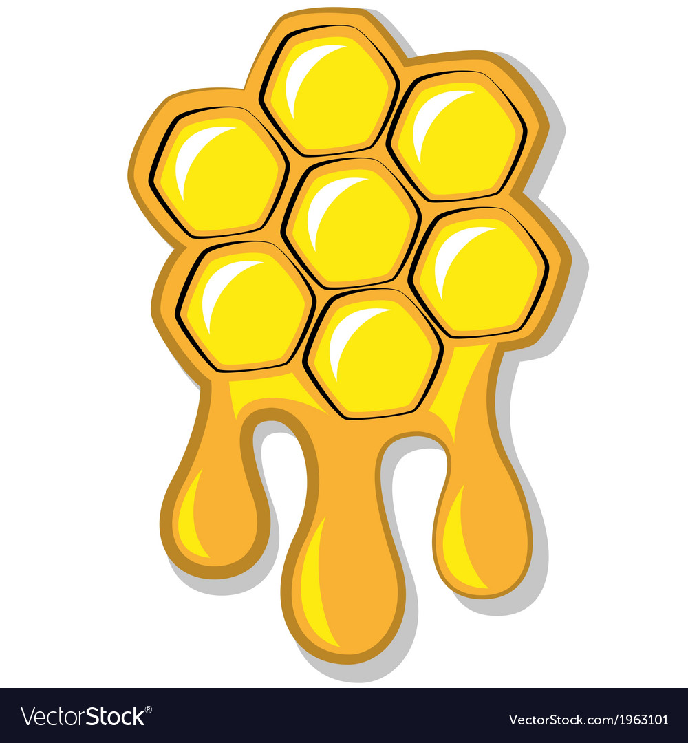 Bees honeycomb full of honey
