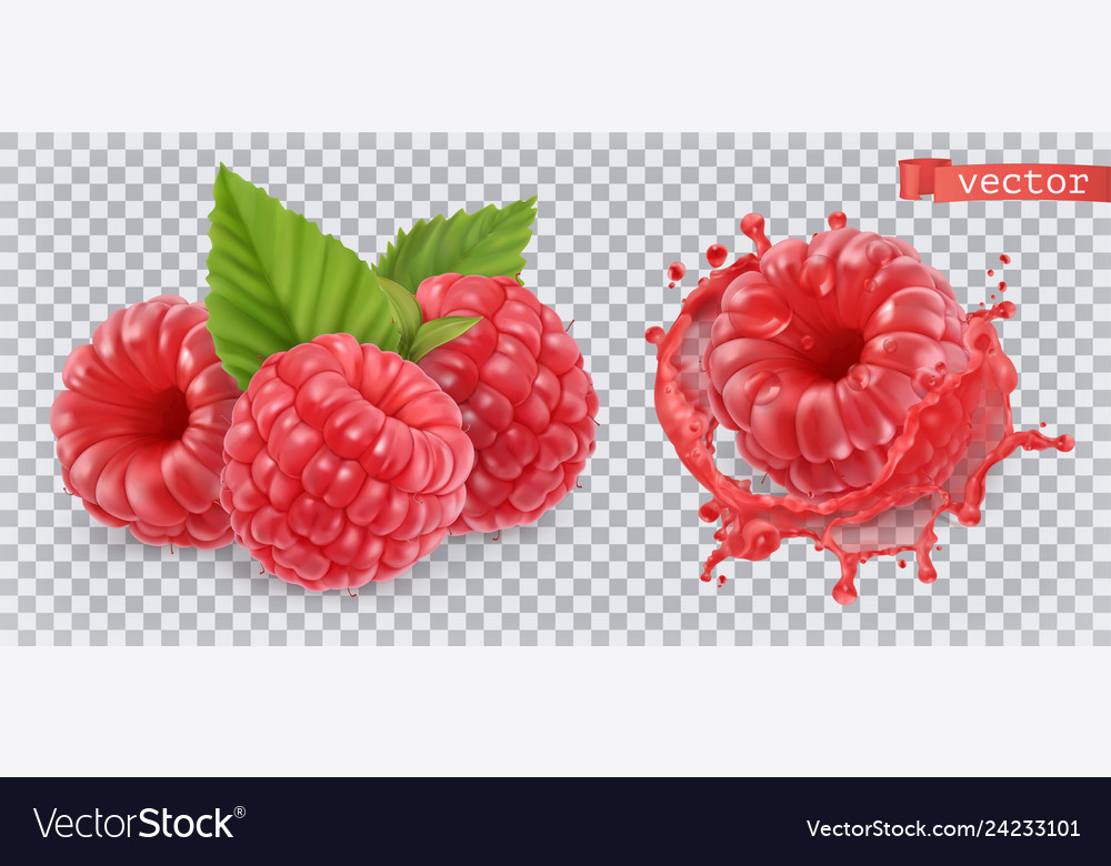 Raspberry sweet fruit 3d realistic icon