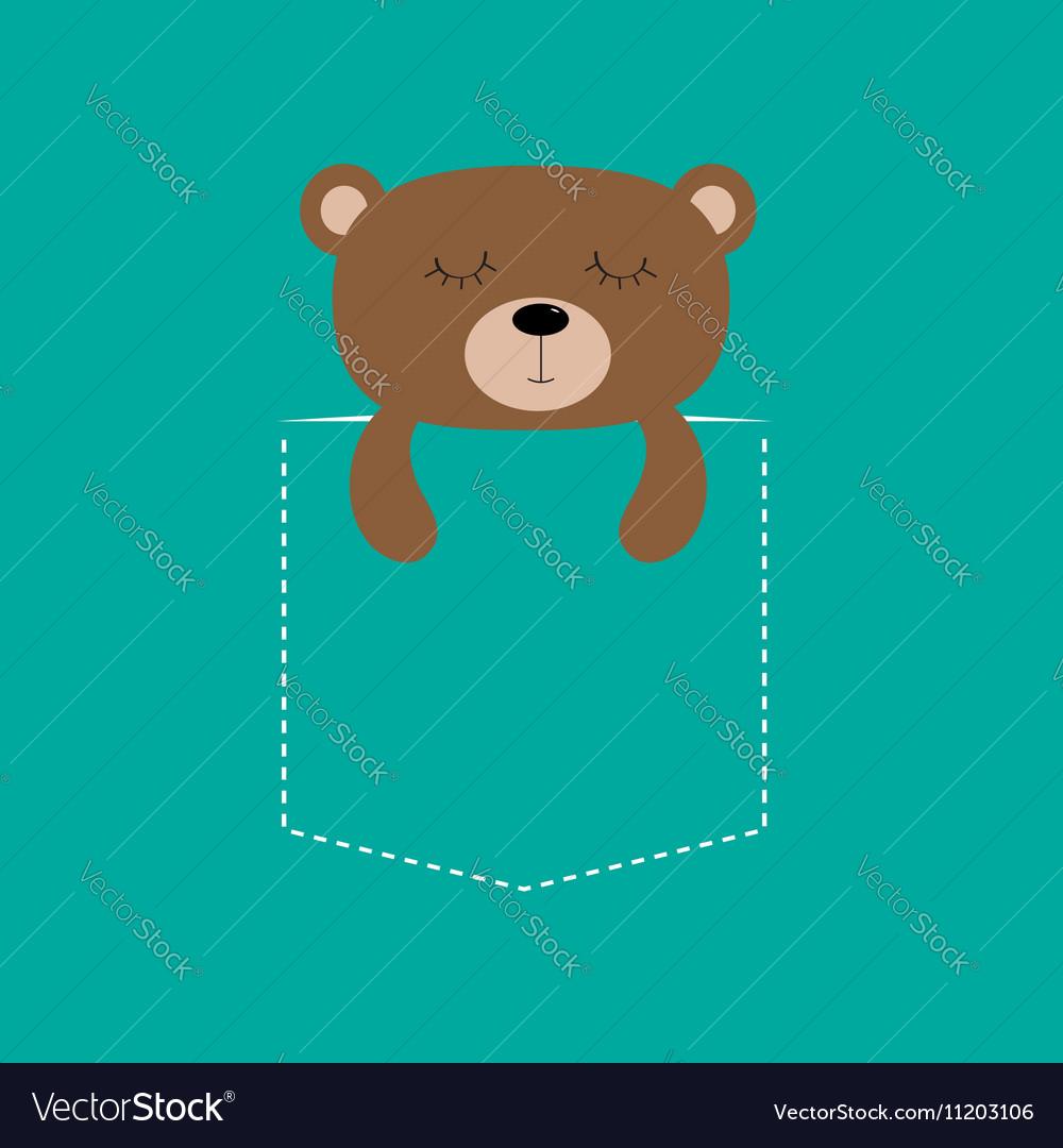 Bear sleeping in the pocket Cute cartoon character