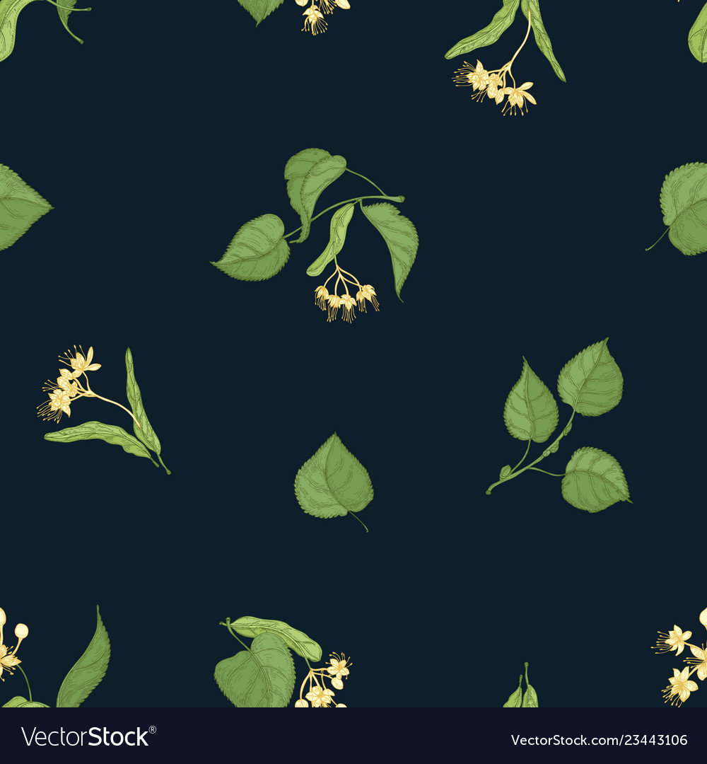 Natural seamless pattern with flowering linden