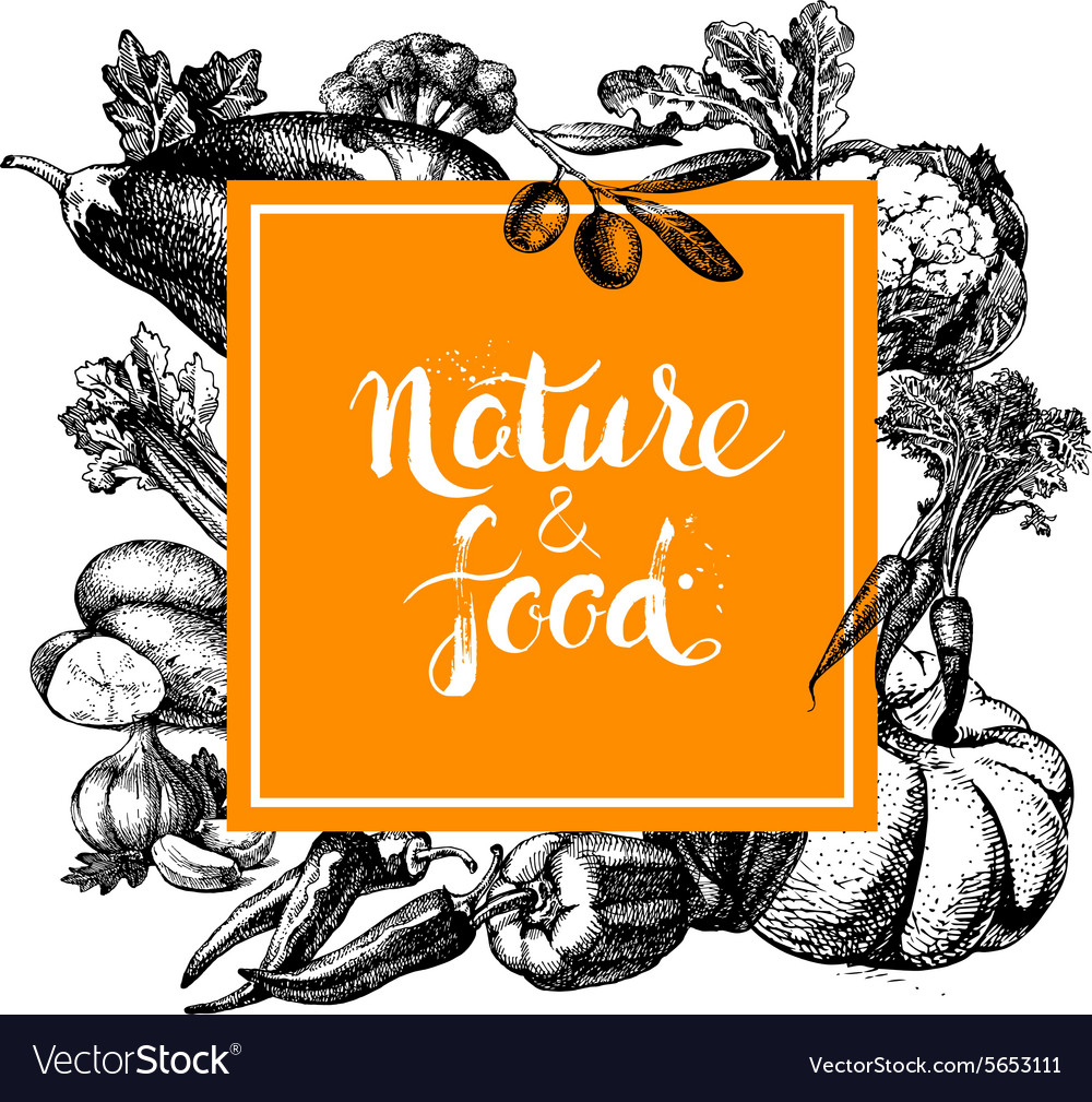 Eco natural food menu background Sketch hand