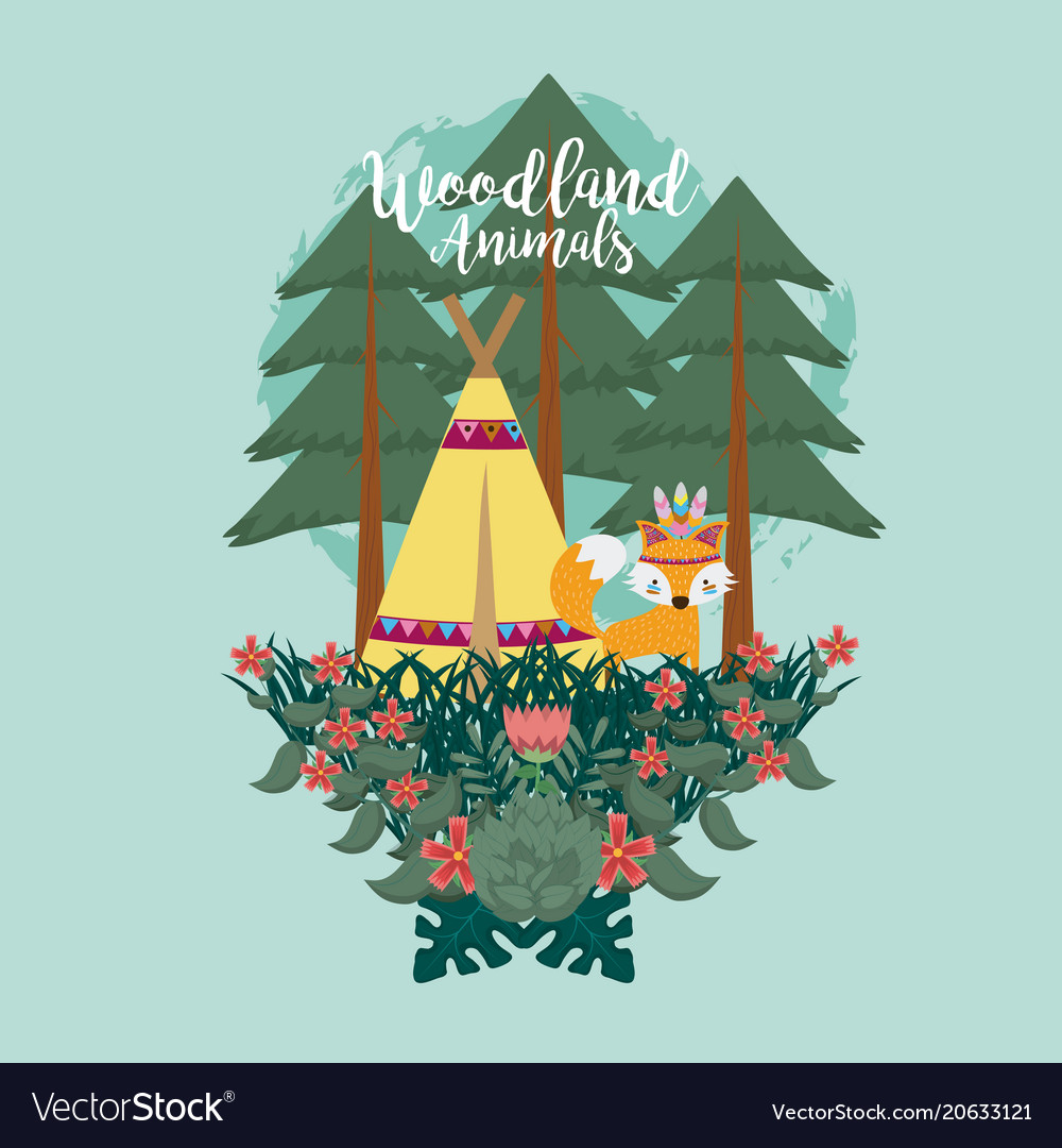 Fox woodland animals woodland animals