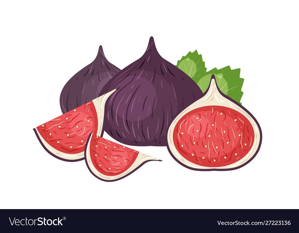 Fresh figs realistic