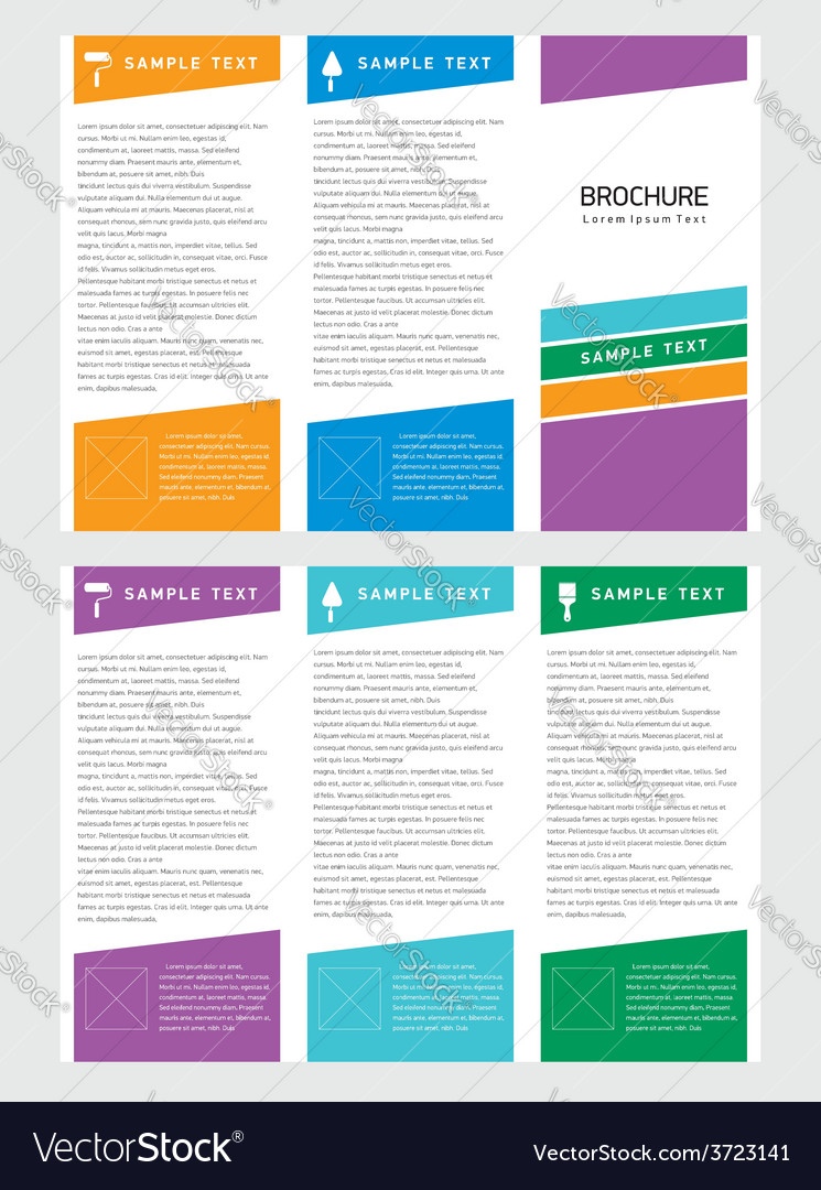 Brochure Tri Fold Layout Design Template Vector Image