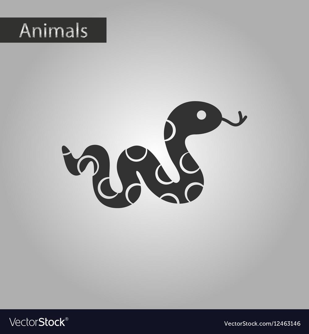 anaconda snake icons set 9