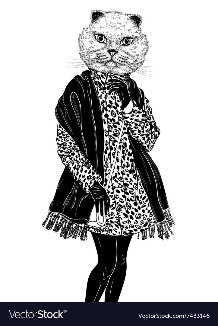 Fashion Hipster Animal cat portrait vector image