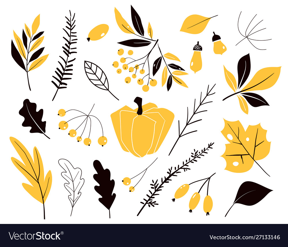Set autumn leaves in cartoon style