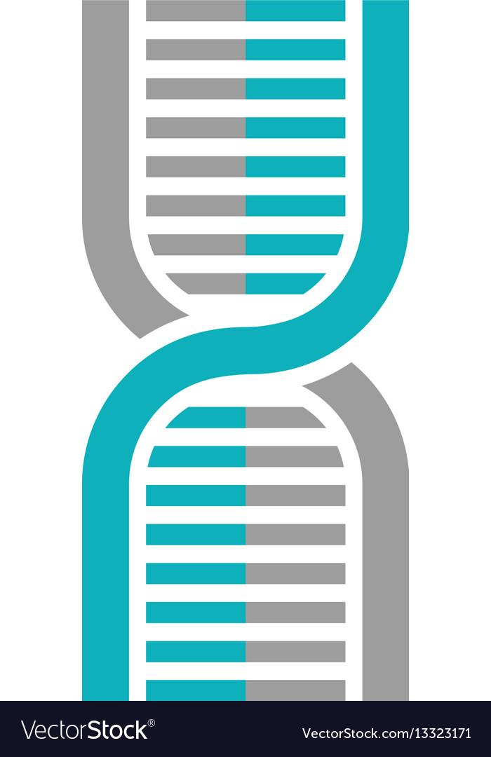 Human dna symbol