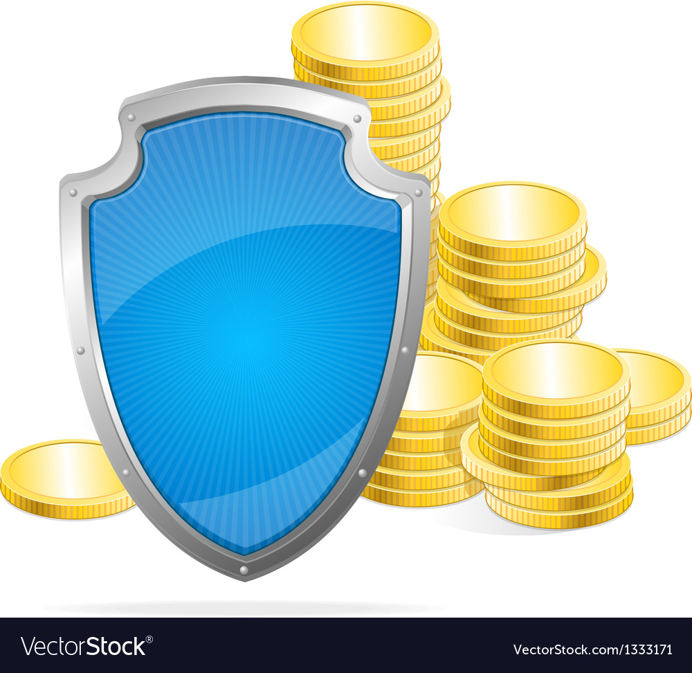 Shield Protection of money concept vector image
