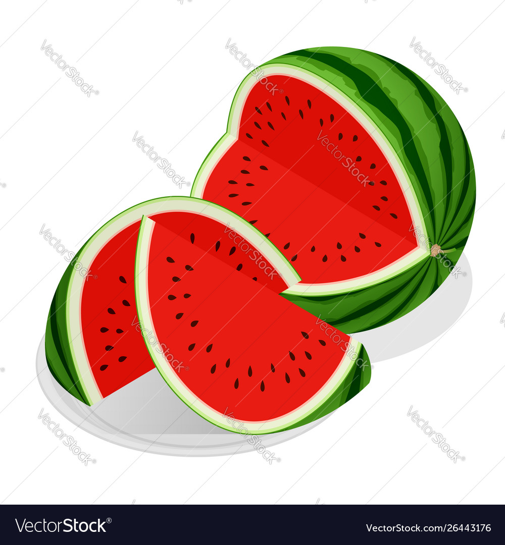 Isometric watermelon and pieces refreshing