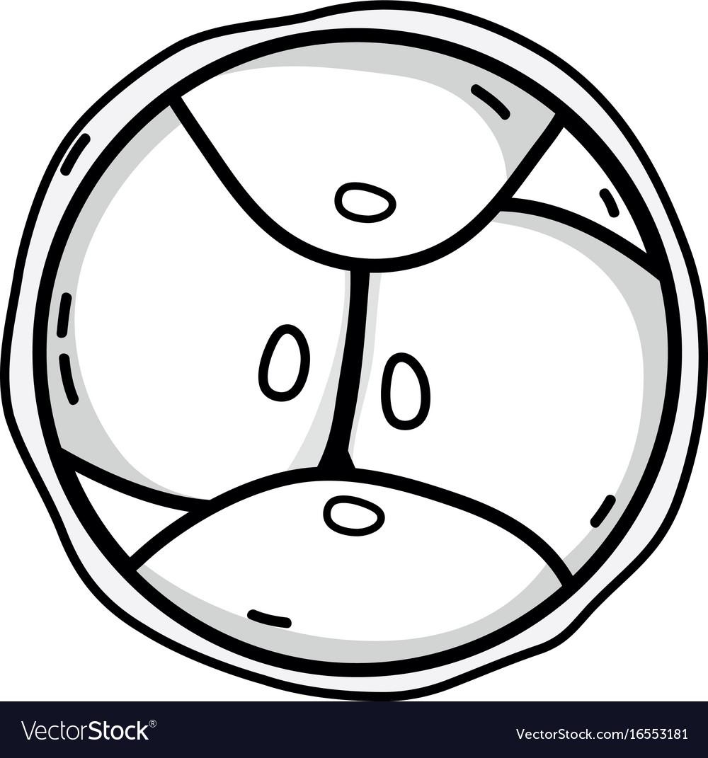 Line biology genetic embryo cells division