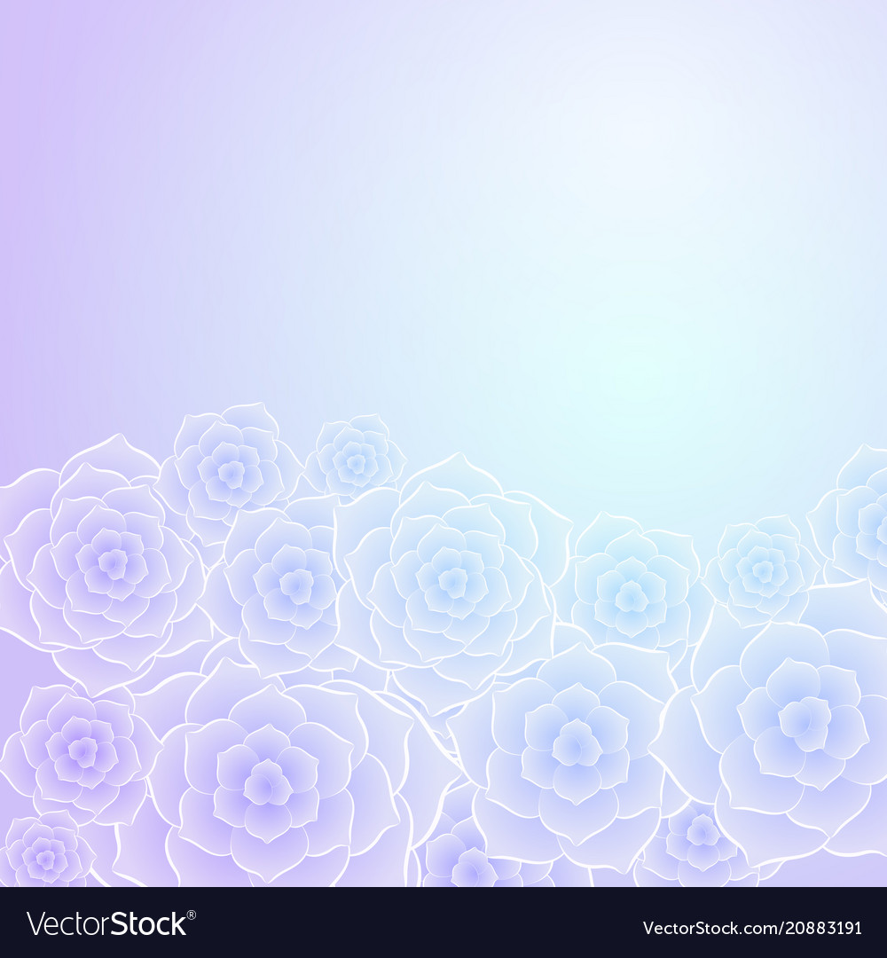 Beautiful purple blue rose flower background