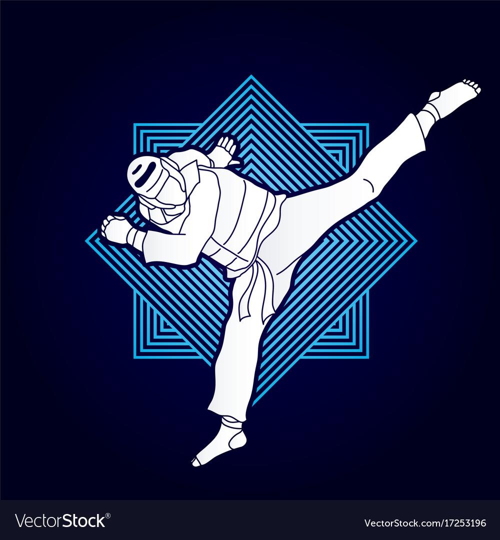 Taekwondo jump kick action with guard equipment