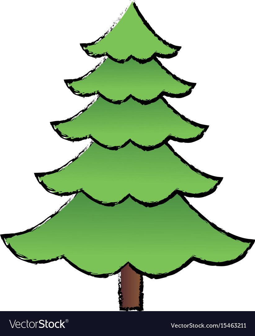 Cartoon Pine Tree Natural Plant Conifer Image Vector Image Animation christmas ornament, pine branches png. vectorstock