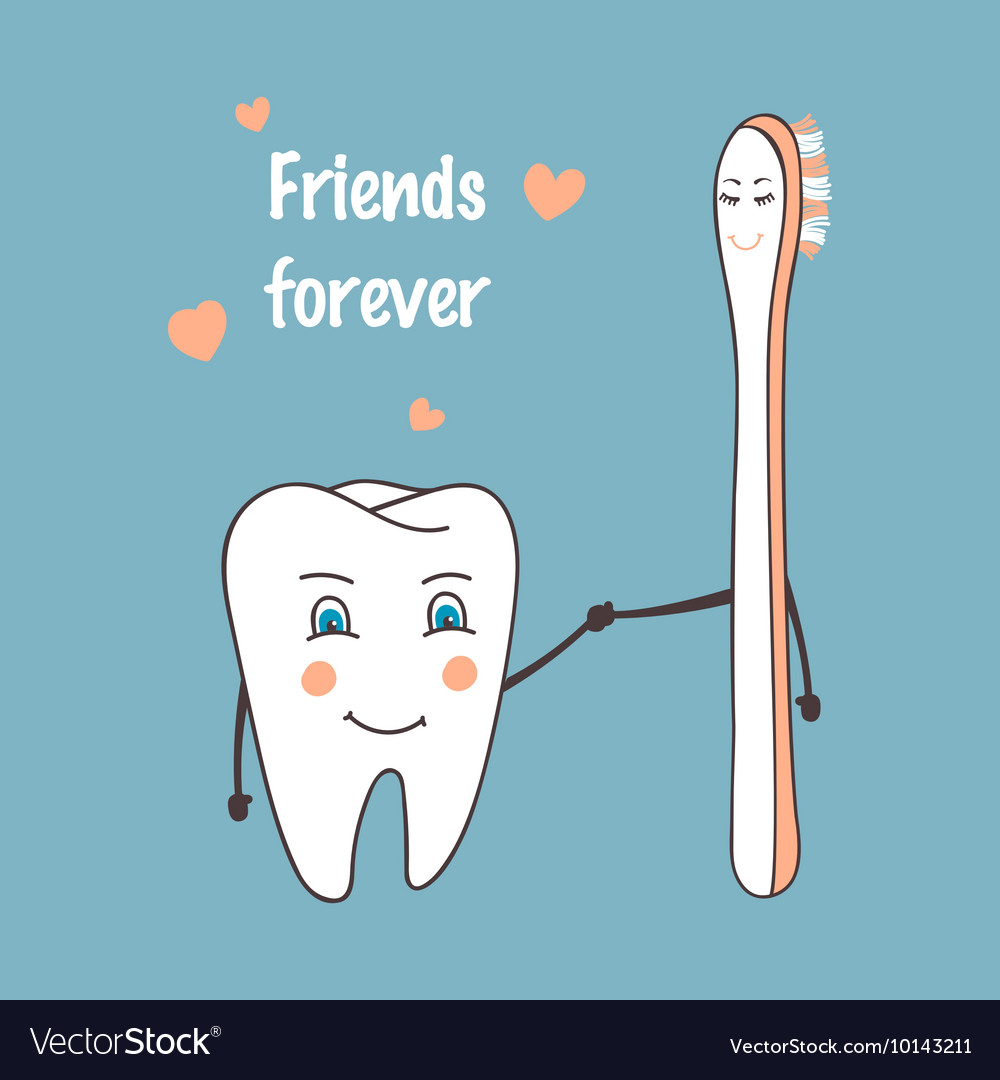 Happy tooth and toothbrush cartoon characters
