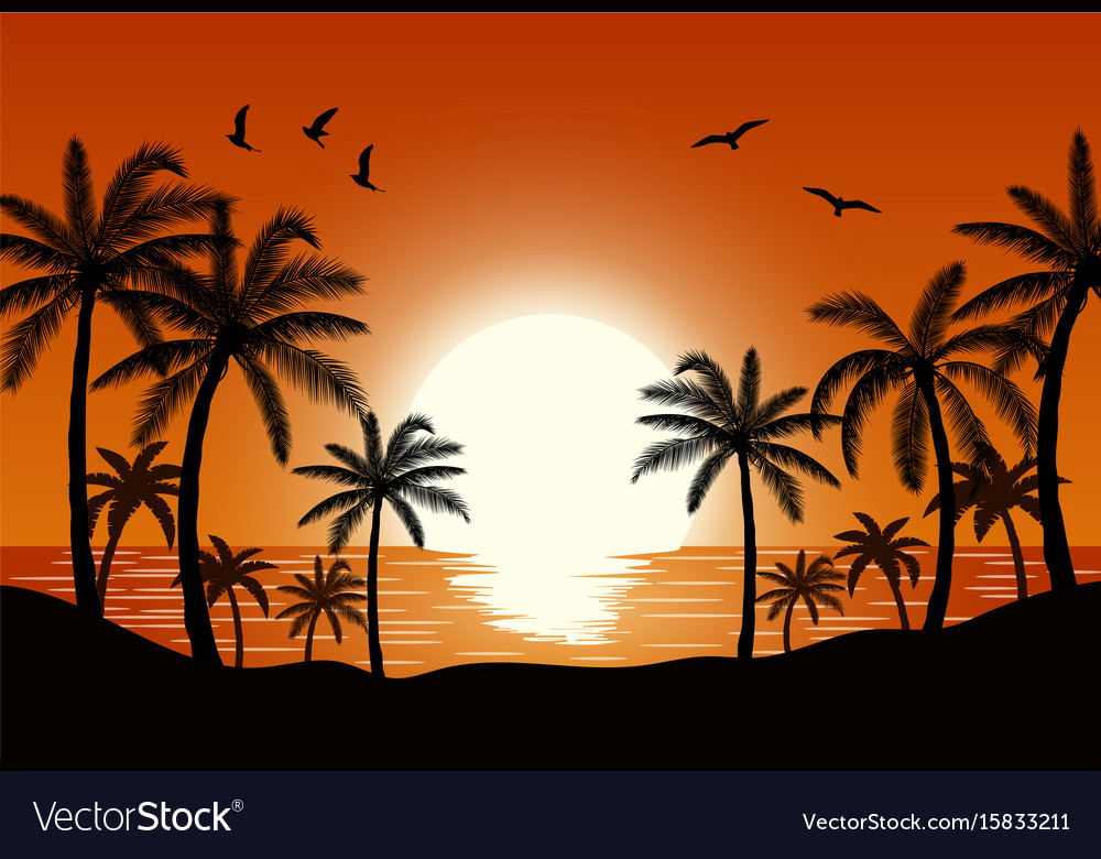 Silhouette palm tree on beach vector image