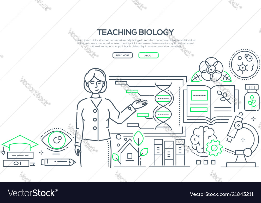 Teaching biology - colorful line design style