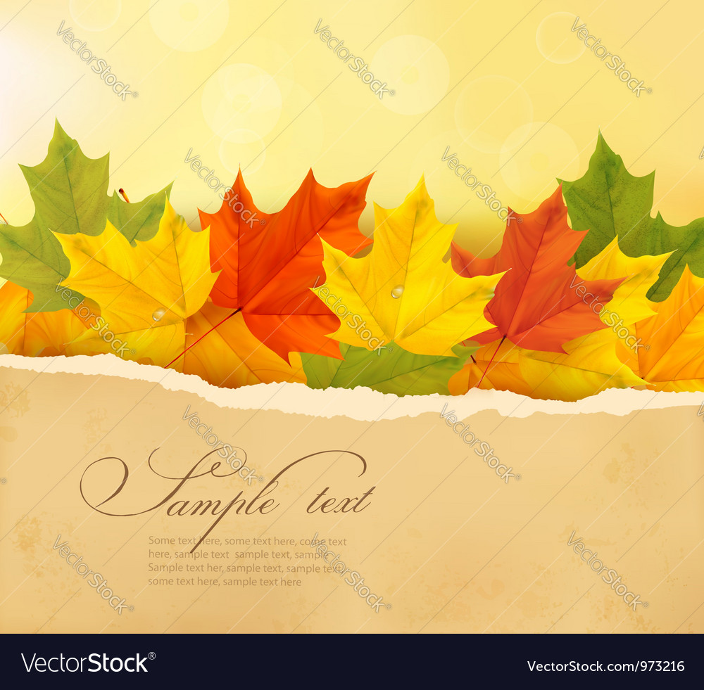 Autumn background with autumn leaves and old paper