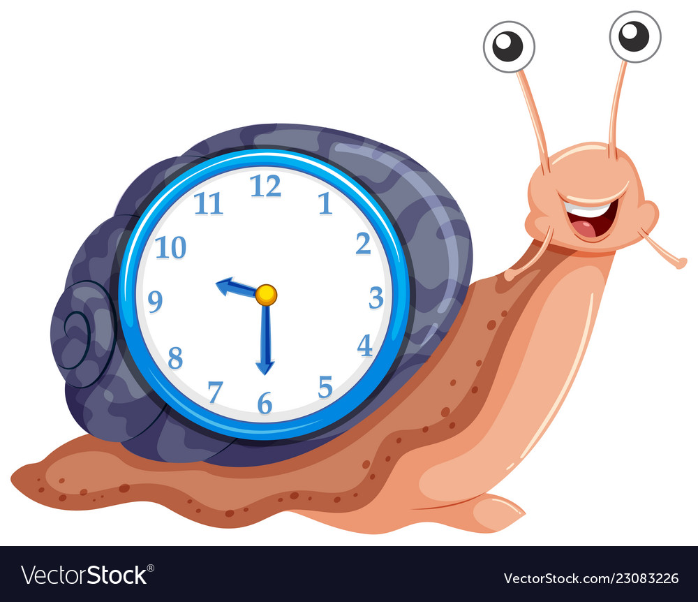 clock with snail template royalty free vector image