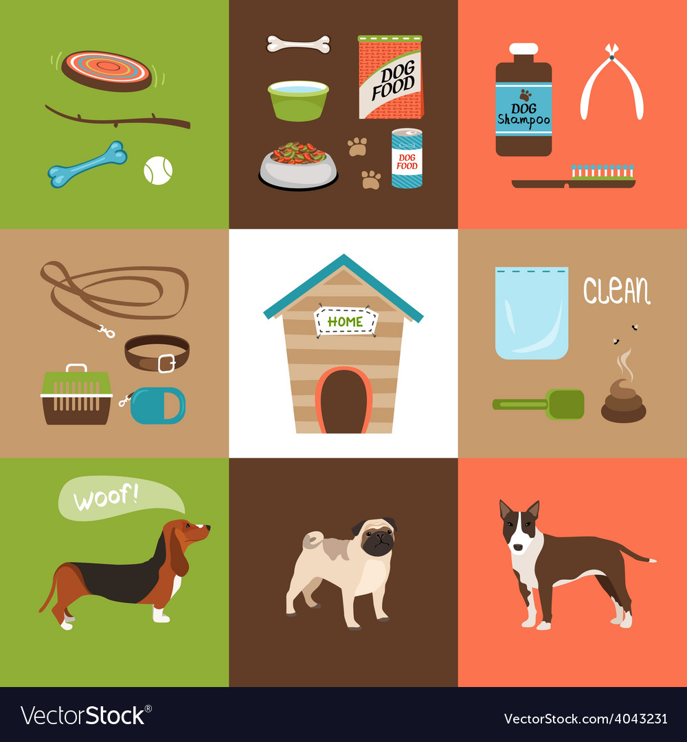 Dogs and dog accessories