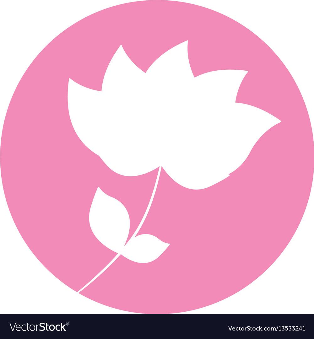 Flower nature flourishes icon vector image